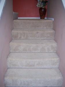 Freshly vacuumed stairs!
