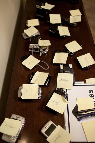 Blackberry dump