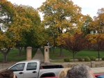 Gorgeous trees with leaves turning in the center of town - I think near the old government buildings and library.